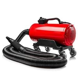 Auto Air Blower