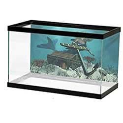 Fish & Aquatic Pet Supplies