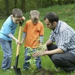 Kids Plants & Trees