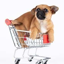 Pet Supplies ( Dogs )