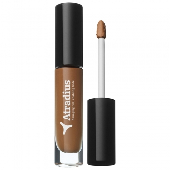 Sublime Perfection face Concealers