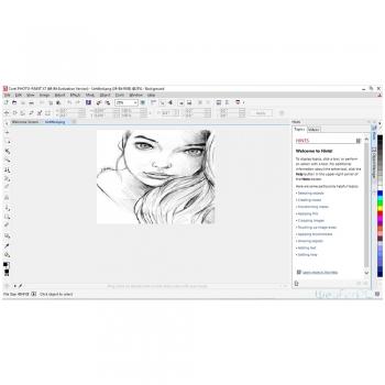Sketch Graphic & Design Software's