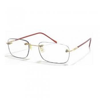 Progressive Addition Lenses (PAL) Computer Glasses