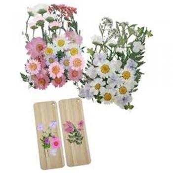DIY Pressed Flower Bookmark