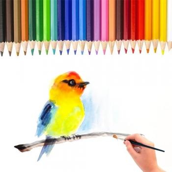 Kids drawing Watercolor Paints