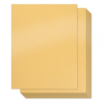 Vellum or shimmery cardstock papers