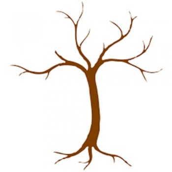 Kid's naked trees
