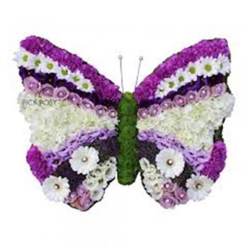Bright butterflies   flowers letters