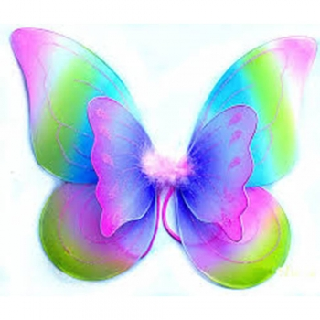 Fabric kids play fairy wings