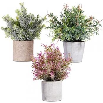 Paper Vase for Indoor Greenery