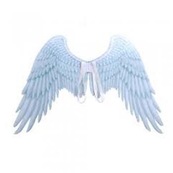 Crystal white kids play wings
