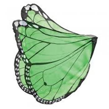 Fabric kids play wings