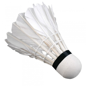Training Badminton cocks