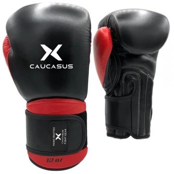 Training Boxing gears