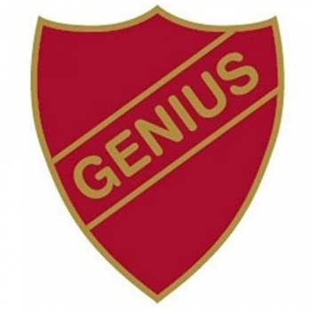 Genius Enamel Pins