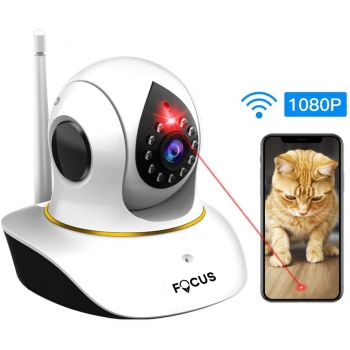 Cat Cameras Monitors