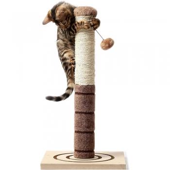Cat Scratching Posts
