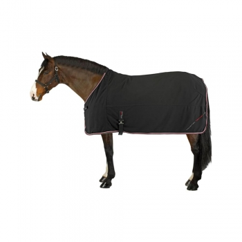 Horse Care Sheets