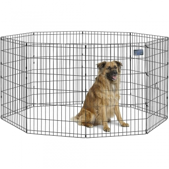Outdoor Dog Pens