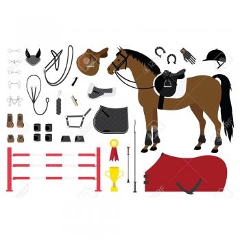 Equestrian Pack Equipment