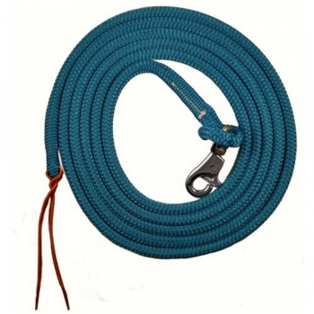 Horse Leads