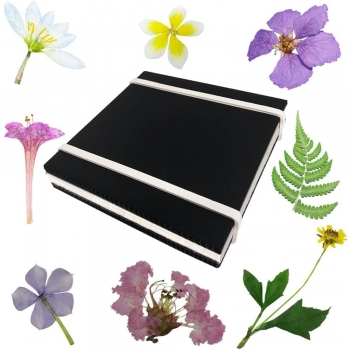 Kids Flower Press Kits