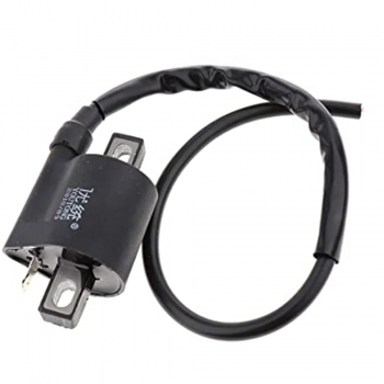 Car Ignition Coil Interface Modules